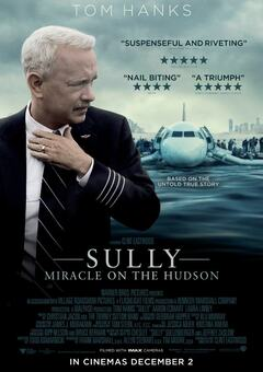 Sully / სალი
